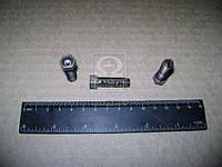 Винт регулировочный ГАЗ 3307,66 коромысла клапана (покупн. ГАЗ). 66-1007075-02