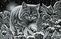 Нічний кіт А-2+