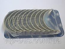 Вкладыши коленчатого вала, коренные (STD) на Renault Trafic 1.9dCi 2001-2006 Kolbenschmidt (Германия) 77753600