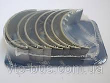 Вкладыши шатунные (STD) на Renault Trafic / Opel Vivaro 1.9dCi (2001-2006) Kolbenschmidt (Германия) 77752600