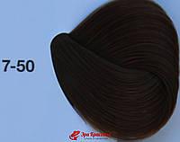 Краска для седых волос Средний русый золотистый натуральный IR 7-50 Igora Absolutes Schwarzkopf, 60 мл 108247757