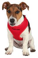 **Шлея-жилетка для собак 26-34см+поводок 2метра/красный