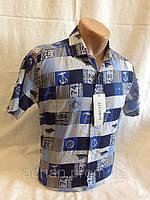 Рубашка мужская короткий рукав LORENTI Якорь (5 цветов), фото 1