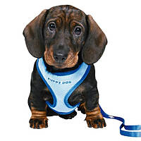 Шлея-жилетка для собак 26-34см+поводок 2метра/голубой