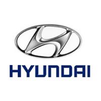 Ковры в салон Hyundai