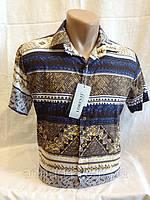 Чоловіча сорочка короткий рукав LORENTI (смужки), фото 1