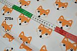 Бязь с мордочками лисичек оранжевого цвета (№279а), фото 5