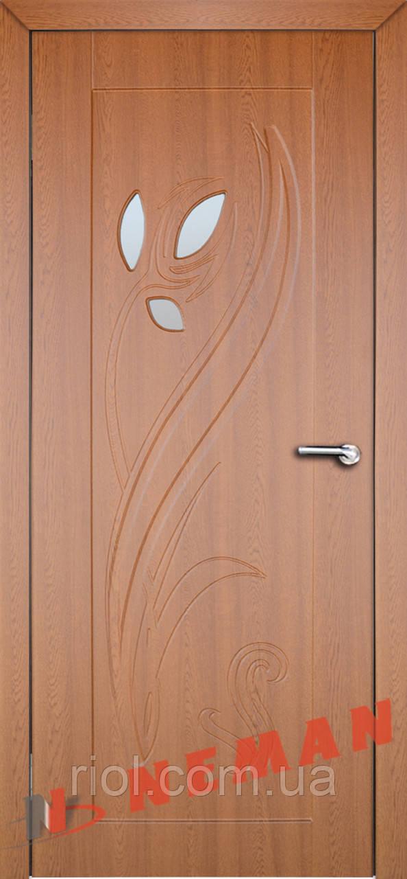 Дверь межкомнатная остекленная Тюльпан 2