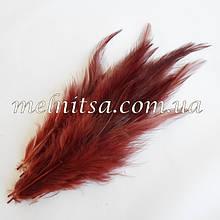 """Перья с окрасом """"под фазана"""", коричневые,  10-15 см"""