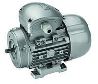 Асинхронные трехфазные электродвигатели DELPHI (Motive)