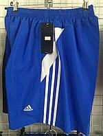 Шорты мужские спортивные Adidas в ассортименте