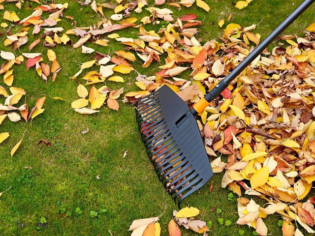 Грабли для уборки листьев Fiskars QuikFit L (135013)
