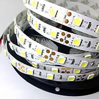 Светодиодная лента 5050 60 шт/м