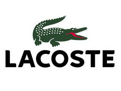 Толстовки и регланы мужские lacoste