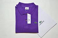 Лакосте поло мужская Polo Lacoste (Поло Лакост) фиолетовая - оригинальная