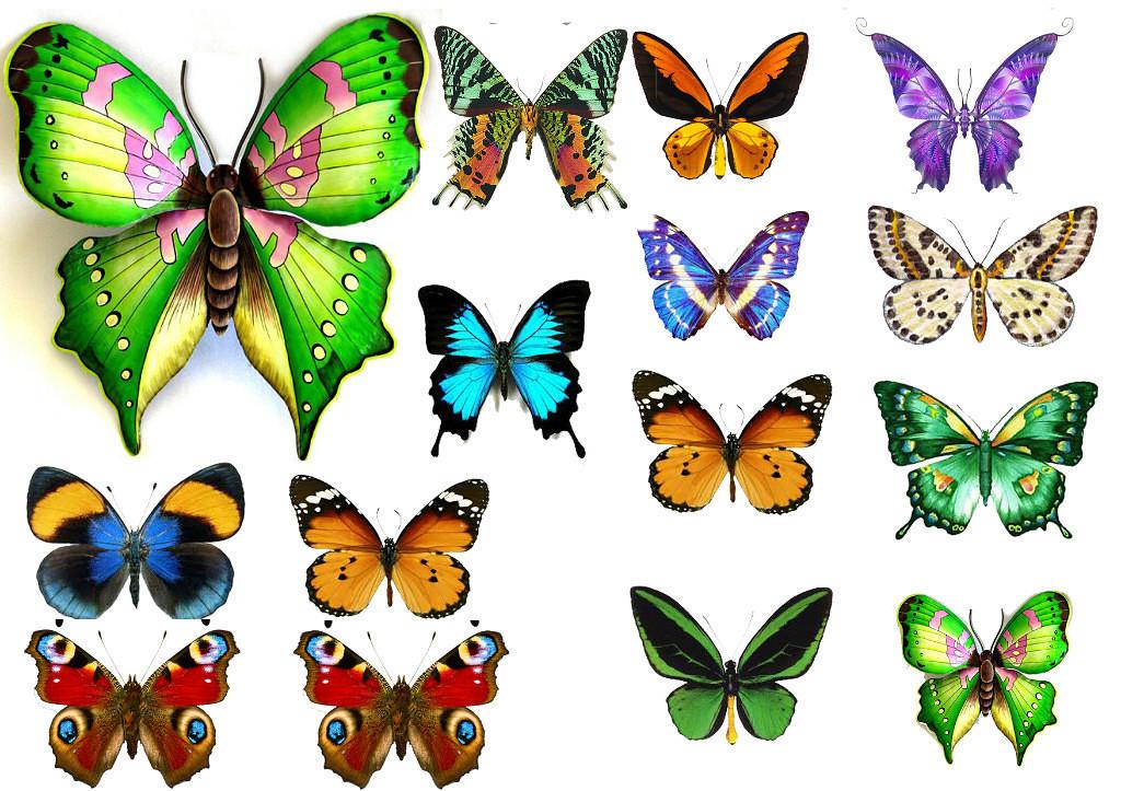 Бабочки ассорти 2  Вафельная картинка