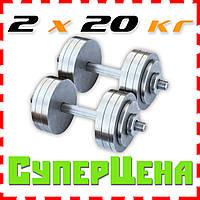 Гантели наборные 2*20 кг (Общий вес 40 кг) Металлические, стальные, разборные