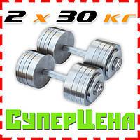 Гантели наборные 2*30 кг (Общий вес 60 кг) Металл