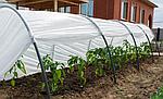 Агроволокно белое Greentex 30 г/м2 - 6,35х100 м, фото 6