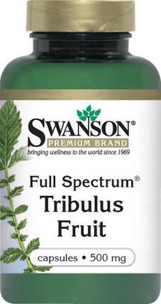 Full-Spectrum Tribulus Fruit 500 mg Swanson 90 caps, фото 2