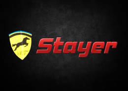Акумулятори Stayer для легкових автомобілів