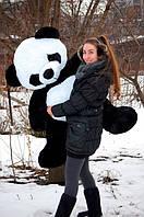 Плюшевая панда 160см