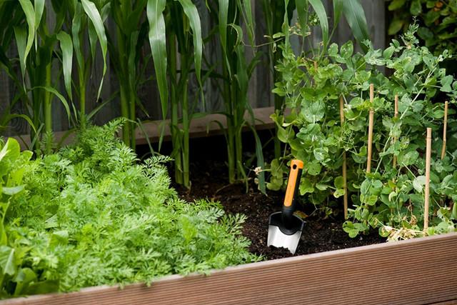 Лопатка для рассады Fiskars Premium Planters (137200)