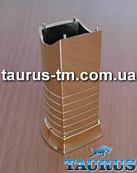 Золотий маскувальний елемент для приховування кабелю (проводу) від електричного Тена, gold
