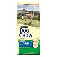 Сухой корм для собак DOG CHOW Large Breed с индейкой. 14кг