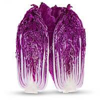 Семена краснокочанной пекинской капусты KS 888 F1 500 шт КС 888 F1 Kitano Seeds  / Китано Сидс