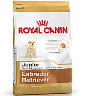 Royal Canin LABRADOR RETRIEVER Junior 33 - корм для щенков до 15 месяцев 3кг