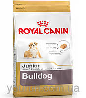 Royal Canin BULLDOG Junior - корм для щенков английского бульдога 3кг