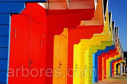 Какую роль в интерьере играет цвет?