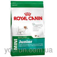 Royal Canin MINI JUNIOR корм для щенков 2-10 месяцев 4кг
