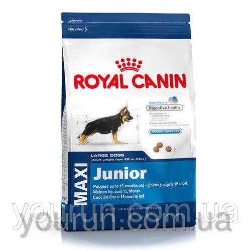 Royal Canin MAXI JUNIOR корм для щенков в возрасте от 2 до 15 месяцев 4кг - Yourun.com.ua интернет магазин в Киеве