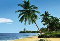 Фотообои бумажные на стену 388х270 см 8 листов: Берег Африки. Komar 8-074
