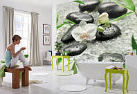 Фотообои бумажные на стену 368х270 см 8 листов: Белые орхидеи среди камней. Komar 8-319