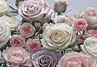 Фотообои бумажные на стену 368х254 см 8 листов: Цветение роз. Komar 8-736