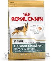 Royal Canin GERMAN SHEPHERD - корм для немецких овчарок 3кг