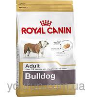 Royal Canin BULLDOG - корм для английских бульдогов  3кг