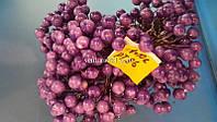 Фиолетовая ягода на проволоке