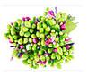 Тычинки Салатово-разноцветные с листиками 24 шт/уп на проволоке