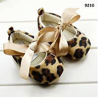 Пинетки-туфли Mothercare для девочки. 11 см