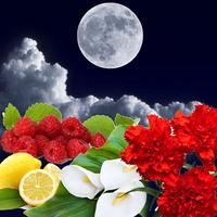 Косметические отдушки для мыла, свечей, косметики ручной работы Лунное затмение