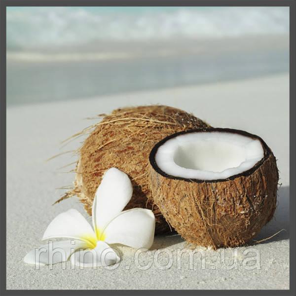 Ароматизатор TPA DX Coconut, фото 1