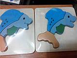 Вкладыш деревянный Дельфин (от 18 мес.), фото 4