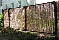 Забор из тростника (д.5-10мм), 2х5м, фото 1