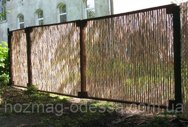 Забор из тростника (д.5-10мм), 2х5м