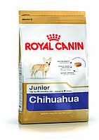 Сухой корм Royal Canin (Роял Канин ) CHIHUAHUA JUNIOR чихуахуа щенок до 8мес, 0,5кг