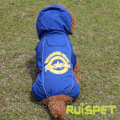 Комбинезон  - дождевик для собак Аутдор, размер M 28/42см, цвет - синий, мембранная ткань, фото 2